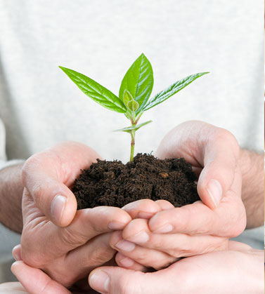 Aliva helps customers care for the environment